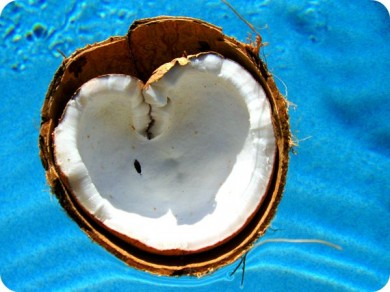 coconut_heart.jpg