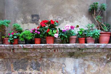 tuscany42-16