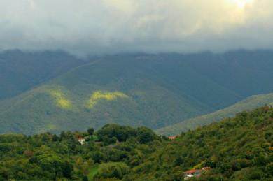tuscany6-39
