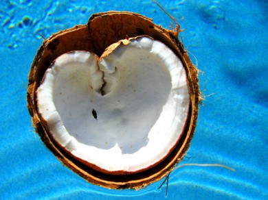coconut_heart