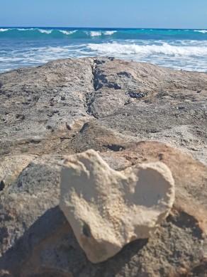 Isla heart